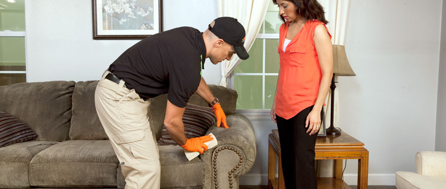 North Charleston, SC carpet upholstery cleaning