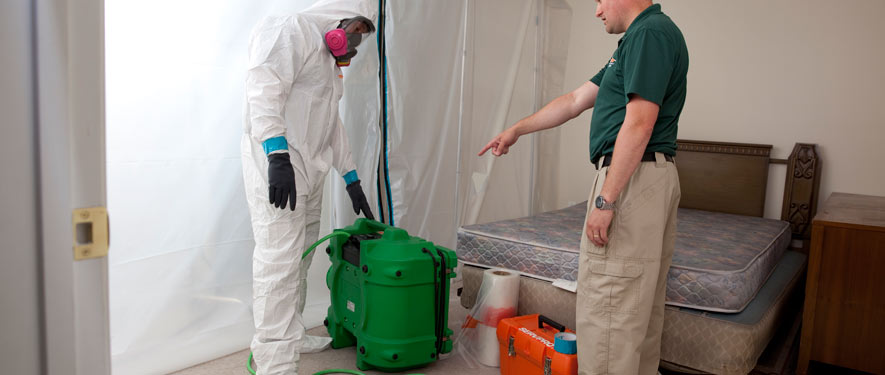 North Charleston, SC mold removal process